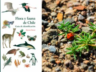Flora y Fauna de Chile Sharon Chester
